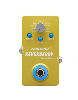 CoolMusic Reverberry Digital Multi Reverb