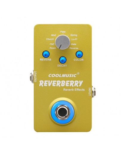CoolMusic Reverberry Digital Multi Reverb